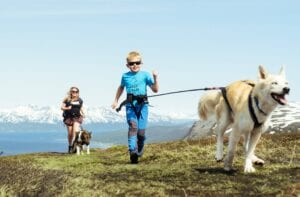 A woman and a child with two dogs hiking through a mountain landscape in summer